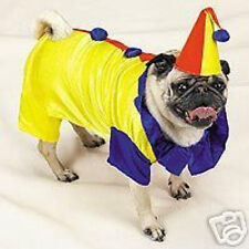 Casual Canine COLORFUL CLOWN  Dog  Pet Halloween Costume XS S M L XL