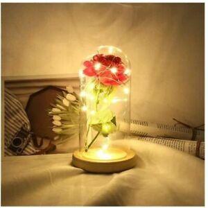 Rose Eternelle Sous Cloche Enchantée Lumière LED Dôme Bois Cadeau Fête des Mères