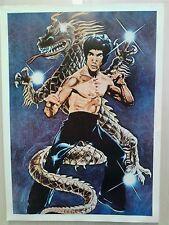 Bruce Lee Dragon Poster