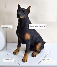 Dogs >Doberman Pinscher status puppy dog sat resin figure figurine Us un5