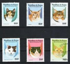 GUINEE 1998 CATS GATOS CHATS KATZE DOMESTICATED ANIMALS FAUNA STAMPS MNH CTO