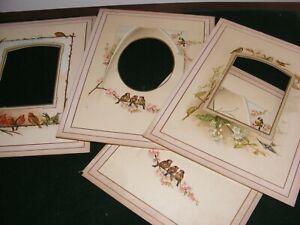 ANTIQUE ART ILLUMINATED ALBUM PAGE X 8 CRAFT VICTORIAN CHROMO LITHO BIRDS FLORA