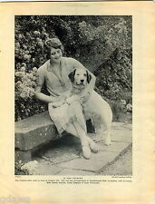 1930 Book Plate Print Clumber Spaniel Camila Gordon Clydesdale Terrier Alexander