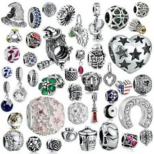 A Silver Charms Beads dangle Fit sterling s925 Bracelet Necklaces European charm