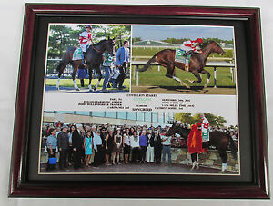 SONGBIRD COTILLION STAKES 2016 FRAMED PHOTO COMPOSITE