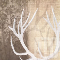 "DEER LODGE I (27x27"") and DEER LODGE II (27x27"") by TANDI VENTER 2PC SET CANVAS"