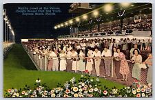 Nightly Crowd at Volusia County Kennel Club Dog Track, Florida Linen Postcard