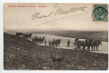 CANADA carte postale ancienne Agriculture scene typique du canada Ploughing