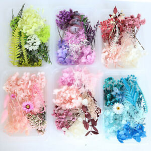 DIY for Resin Jewelry Making Decors Real Dried Press Flowers Candle Making Craft