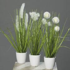 Kunstpflanze Gras im Topf, 36 cm, 3er Set, Grün / Creme, Kunstgras, Tischdeko