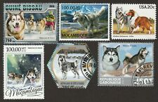 Alaskan Malamute * Int'l Postage Stamp Art Collection * Great Gift Idea *