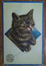 HOFFMANN'S no1 RICE STARCH  ADVERT POSTCARD,   with CAT