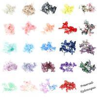Preserved Dry Hygranges Flowers Nail Art Make Up Body Paint Art Craft Gel Resin
