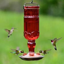 Perky-Pet 24 oz. Garden Antique Red Glass Hummingbird Feeder Nectar Bird Supply