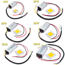 LED Chip Driver Transformateur 10,20,30,50W 100Watt for Extérieur Jardin Ampoule