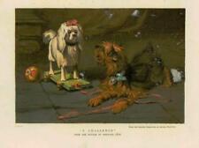 1883-ANTIQUE PRINT Fine Art défi HERMANN LEON CHIENS Balle chariot (55B)