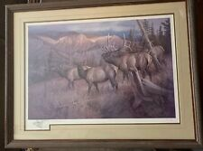 Rare Hayden Lambson Signed A/P Remarque Edition Bull Elk & Cows Print 25/25