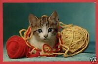 KITTEN CAT WITH TWO BALLS OF YARN   POSTCARD