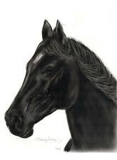 Oil original painting on Paper horse equine portrait Noir hand made Signed
