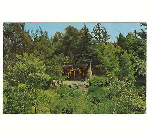 Disneyland Vintage Unused Postcard Frontierland Burning Settlers Cabin c.1965-69