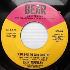 DON MEEHAN country gospel 45 WHAT DOES THE LORD LOOK LIKE / BLAME YOURSELF jr490