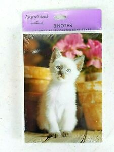 Hallmark Kitty Cat Kitten Blank Notes Cards 1 Pack(8)-Free Shipping!