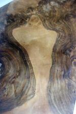 Burr/Burl Walnut Veneer   58 cm by 33 cm  (1521)