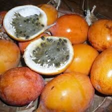 Passionfruit edulis cv Gold Nugget Seeds Golden Sweet Fruit