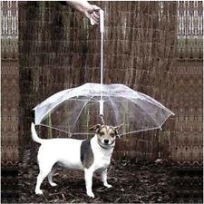 NEW Transparent Umbrella with Built-in Leash Pet Dog Puppy Cat Dry in Rain Sleet