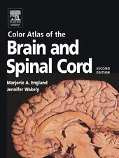 Color Atlas of the Brain and Spinal Cord : An Introduction to Normal...