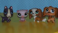 Littlest Pet Shop  Set   LPS