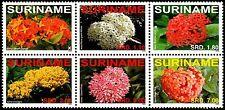 ✔️ SURINAME 2008 - FLORA FLOWERS - MI. 2254/2259 ** MNH OG
