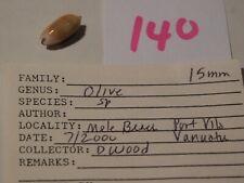 Okiva sp Vanuatu data 15mm #140