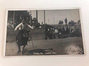 AZO RPPC Photo Postcard by Martin-WESTERN COWBOY RODEO-Riding the Frantic Bull