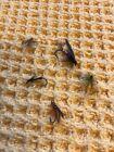 5 Vintage 1970s Fly Fishing Flies