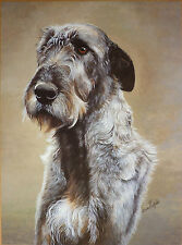 Paintings/Posters/Prints Irish Wolfhound Collectables