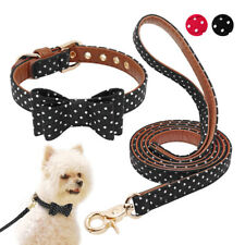 Polka Dots Pet Collar and Leash set Cute Bowtie Small Medium Dog & Cat Necklace
