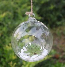 Hanging Vase Clear Flower Planter Terrarium Container Glass Home Wedding Decor