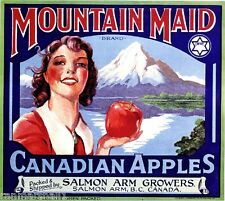 Salmon Arm Canada B.C. Mountain Maid Canadian Apple Fruit Crate Label Art Print