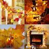 10-40 LED Fall Maple Leaf Fairy Light String Autumn Leaf Lamp Garland Xmas Decor