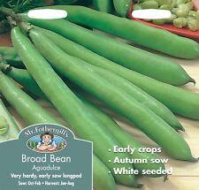 Mr Fothergills - Pictorial Packet - Vegetable - Broad Bean Aguadulce - 50 Seeds