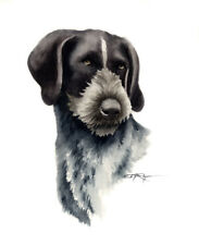 German Wire Haired Pointer Painting 8 x 10 Art Print by Artist Djr
