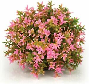 Oase Biorb Easy Plant Pink Color Ball weighted plastic aquarium 3.4 Inch