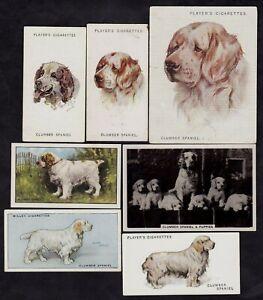 7 Different Vintage CLUMBER SPANIEL Tobacco/Cigarette/Tea Dog Cards Lot