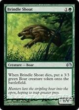BRINDLE SHOAT Planechase 2012 MTG Green Creature — Boar Unc