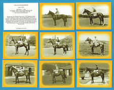 Cigarette/Trade Cards - 1960`s RACEHORSE WINNERS - Full mint condition set
