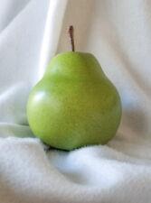 "Ceramic Pear, 6"" Decorative Green Speckled, Natural Wood Stem, Brazil"