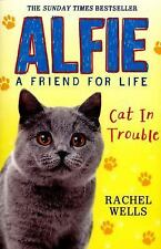 Alfie Cat in Trouble by Rachel Wells (2016, Paperback)