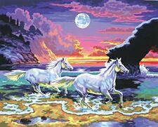 Tableau peinture au Numéro Chevaux au Crépuscule - KSG