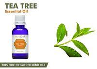 Tea Tree Essential Oil 100% Pure Natural Aromatherapy Therapeutic Grade Oils